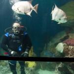 Baltimore Dive-16